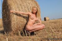 Brigitte – the harvest